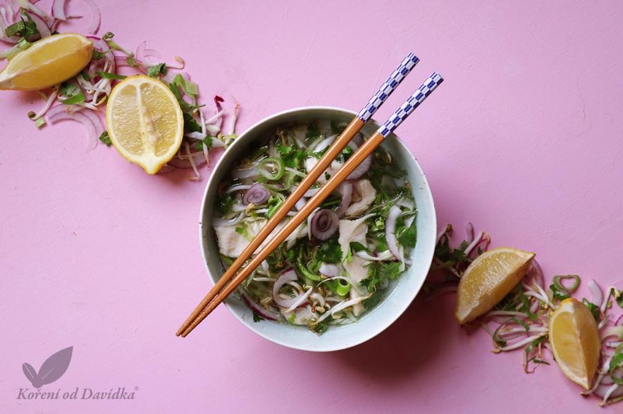 Vietnamská kuracia polievka - Pho Ga